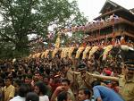 Thrissur pooram elephants.jpg